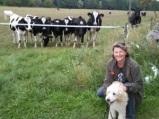 Miljöträning för matte, som inte gillar kor så vidare värst....