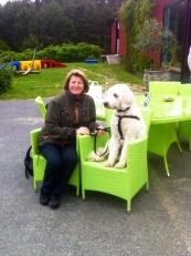Charlie gillar dessa gröna stolar...