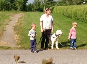 Vi har varit på promenad ner till sjön och här ser vi oss för innan vi går över vägen. Killarna turas om att hålla i korta kopplet. Alla tre skötte sig ypperligt!