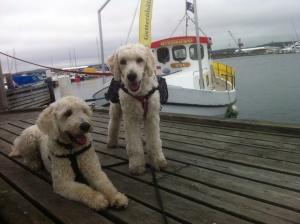 Vi väntar på båten.