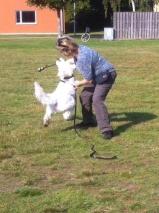 We hoo, lek, efter hunden kom på inkallning, glad matte =)