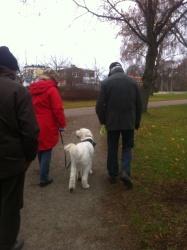 På promenad.