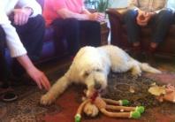 Här har Charlie just öppnat sin julklapp..