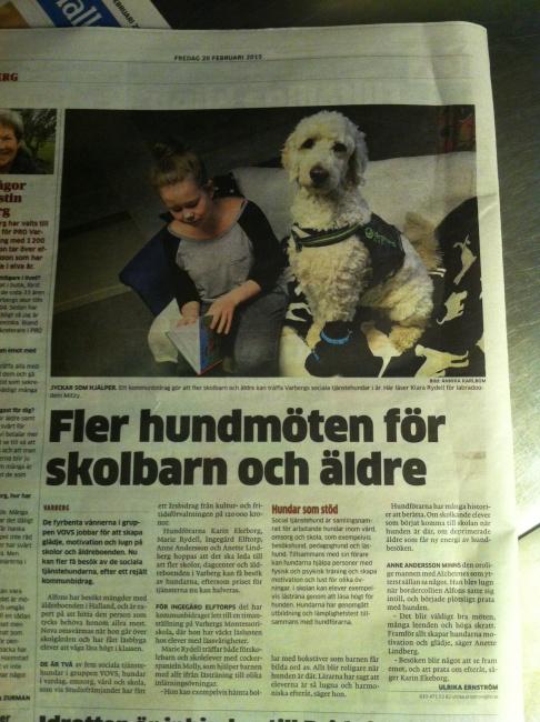 Artikel om VOVS i Hallands nyheter.