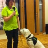 Vi pratar lite Vårdhund, ovant med mic...