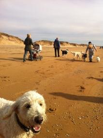 På stranden.