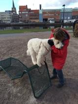 Duktig hund!!!!