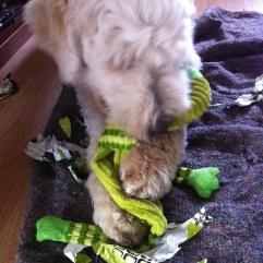 Kul grön leksak!