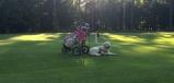 Golfbagen och Charlie