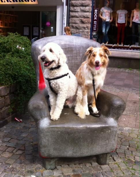 Charlie och Viggo sitter så fint i coolaste fåtöljen i Halmstad.