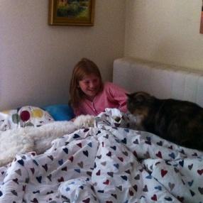Morgonmys med både hund o katt.