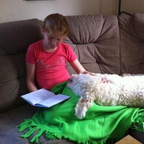Läsning för blivande läshund =)