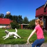 Bollen i luften och full fart =)