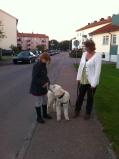 Promenad med Linnea, fin kontakt.