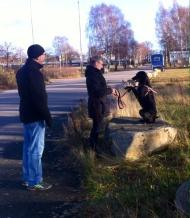 Sienna, en underbart glad och trevlig hund, övar balansen här.