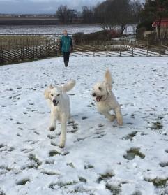 Mitzy och Charlie