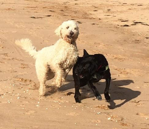 Charlie och Sienna =)
