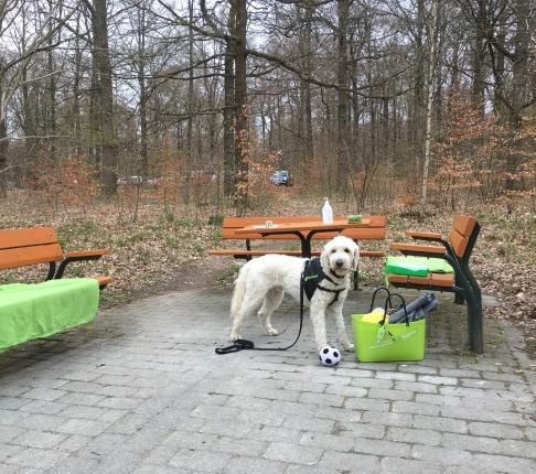 Vi väntar på besökare =)