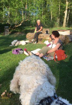 Liten paus. Charlie tittar på fina Lycka som sitter i mattes knä, och Mitzy som hittat en fin pinne.