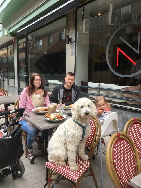 Fika på cafe Noch, hundar välkomna på uteserveringen =)