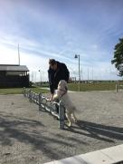 Anders och Saga tränar att sätta tassarna
