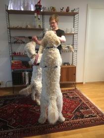 Jakob tränar båda två, när han ändå håller på =)