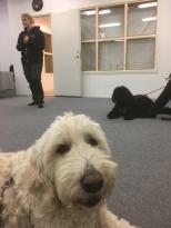 Vi lyssnar på instruktionen om nästa övning.
