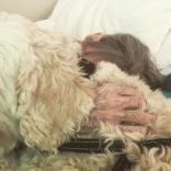 Charlie ligger i sängen hos en av våra kunder som vi har haft många besök hos. De känner varandra väl.