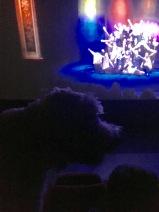 Charlie kollar på bioduken när barnhemsbarnen dansar.