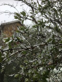 Vår och vinter möts