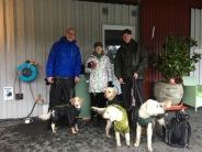 Vi fikar medhavd fika under tak för att slippa snön ett tag =) Svante, Bosse, Katarina, Torsten, Anders, Saga och Charlie