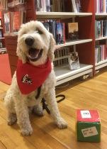 Charlie har jobbat på Andersbergs bibliotek. Trevliga barn som läst och gjort tricks. Ett sant nöje att få göra detta.