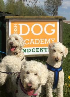 I strålade sol utanför Swedish Dog academy Hundcenter