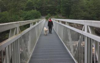 Över en lång gallerbro med forsen nedanför men Charlie är så trygg med sin vän.