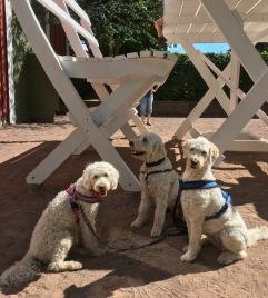 Hundar i Nils Karlsson pysslings värld