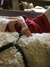 Lugn musik i rummet och vila tillsammans med en hund jämte sig skänker ro