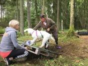 Dogparkour , Saga tränar flip