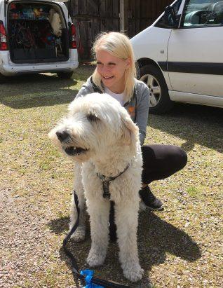 Charlie i knät på Malin, Dogparkour Sweden