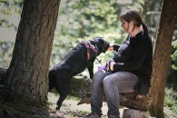 Terapihunden Tage jobbar på parkluren