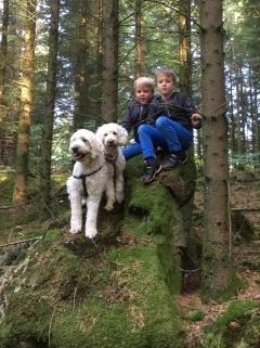 Mycket spännande i skogen. Charlie, Saga, Philip och Eric på en stor sten och även massor av trattisar