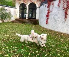 Charlie och Saga i lek på slottet....