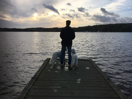 Husse och hundar tittar på tjusig solnedgång