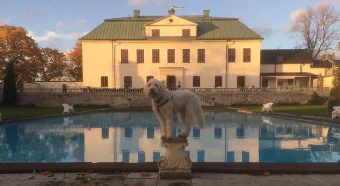 Prins Charlie ställer upp för bild i slottsträdgården
