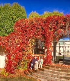Husse och vovvar vid lusthuset på Häringe slott