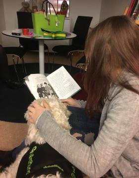 Saga lyssnar på bra bok om hästar