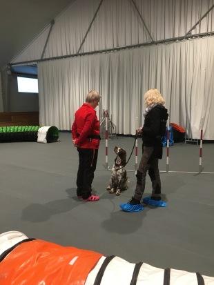 Hjördis tränar med figurant