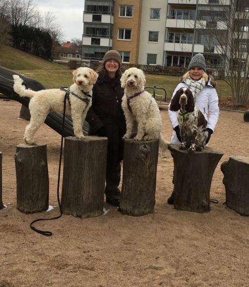 Saga mellan sina kompisar på träning med Svante och Hjördis