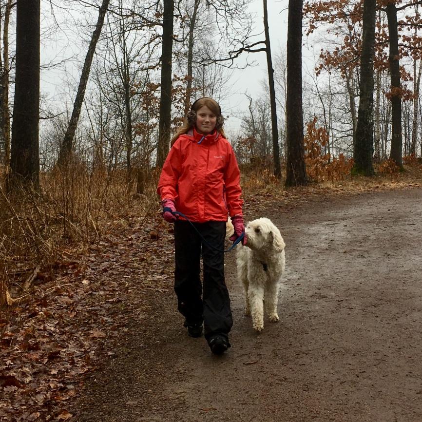 Linnea tog fint hand om Charlie vid promenaderna. han var mycket nöjd!