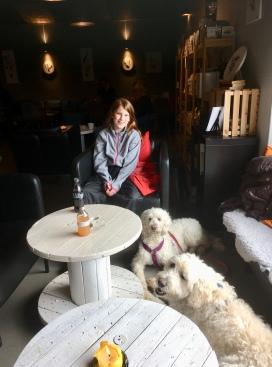Cortado coffeshop, hundvänligt fik i Halmstad. Vi åt varsin god paj och hundarna fick mumsa på varsitt ben.
