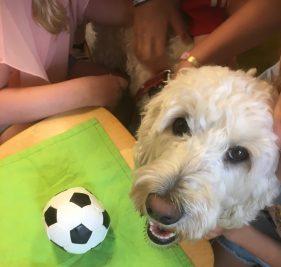 Saga gillar sin boll, och vill gärna leka lite med den tillsammans med barnen.